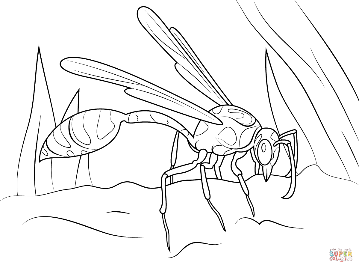 1199x894 Hornet Coloring Pages