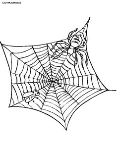236x297 Charlottes Web Coloring Page Free Download