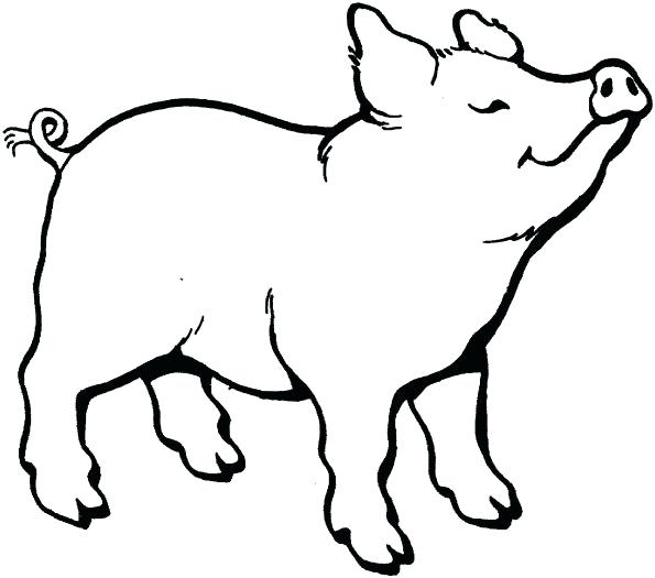 595x525 Charlottes Web Coloring Pages Web Coloring Page Charlottes Web