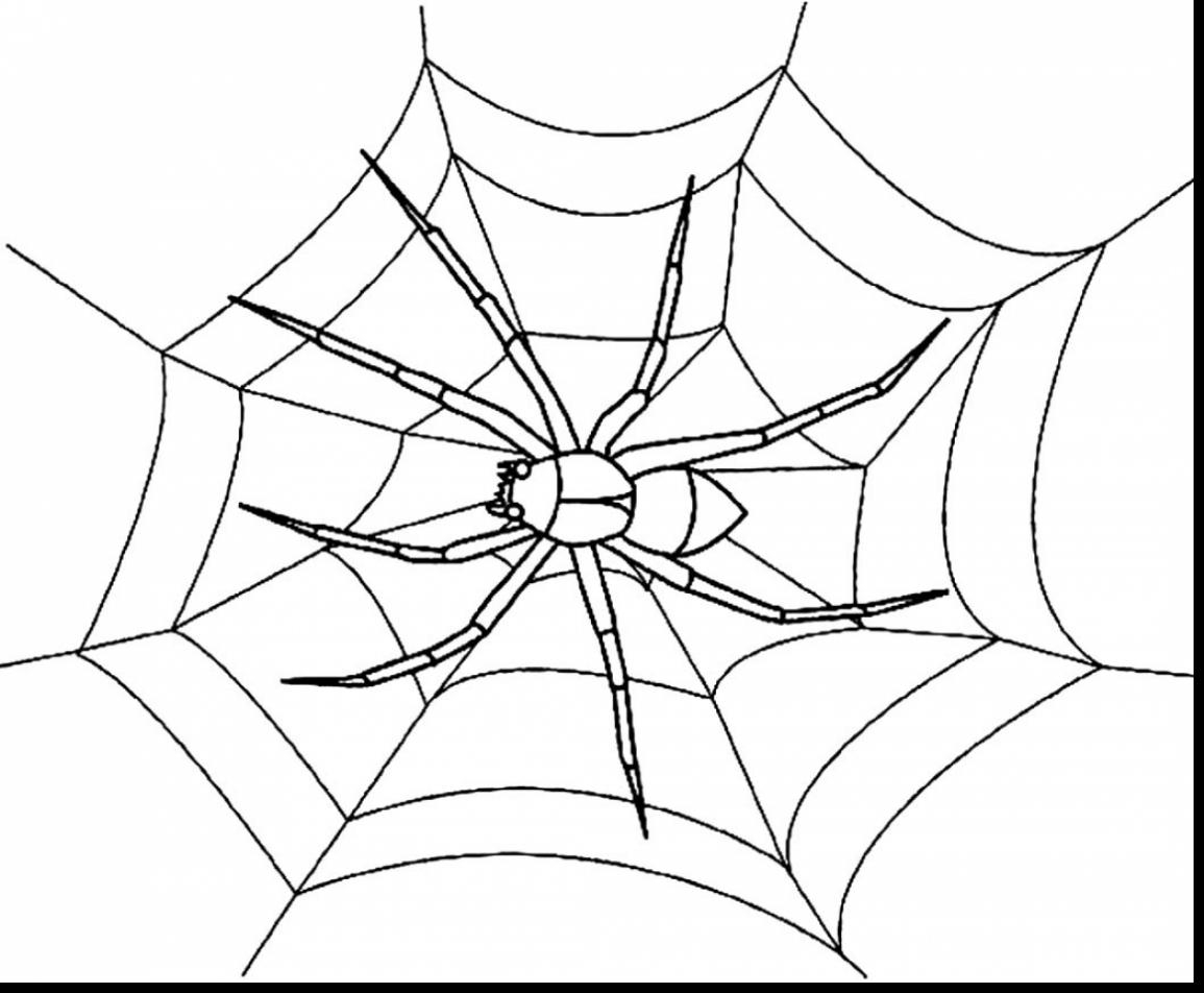 1155x952 Spider Web Coloring Pages Gallery Spider Web Coloring Page Image