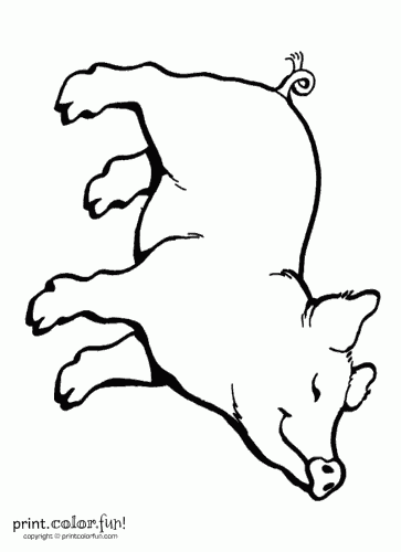 363x500 Charlotte's Web Coloring Pages Fun! Free Printables