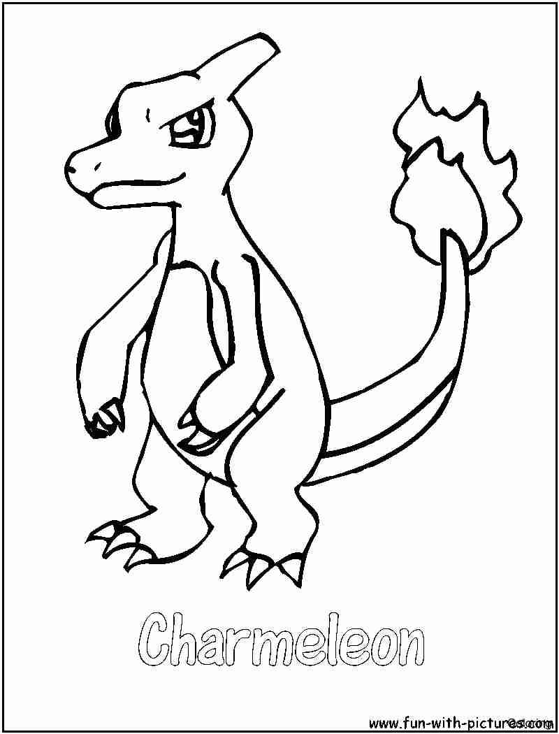 800x1050 Beautiful Mega Charizard Coloring Pages With And Online Charmander