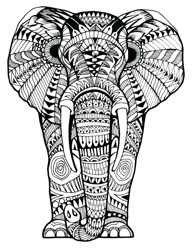 736x952 Coloring Book Elephant Elephant Coloring Book And Free Elephant