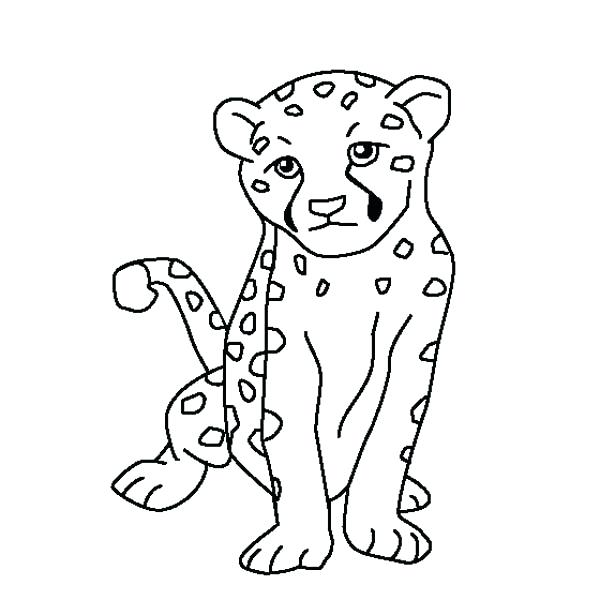 600x600 Cheetah Coloring Pages Cute Baby Cheetah Coloring Page Free Online