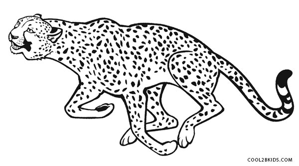 600x333 Printable Cheetah Coloring Pages For Kids