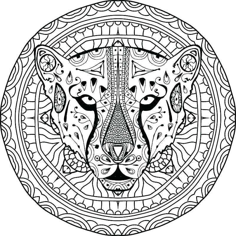 800x800 Cheetah Coloring Pages