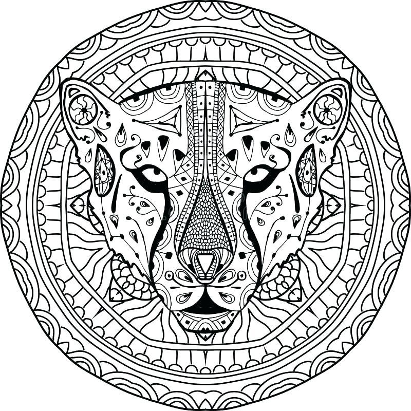 800x800 Cheetah Coloring Pages Cheetah Coloring Pages To Print Cheetah