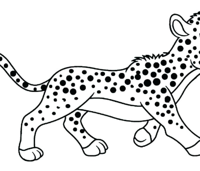 678x580 Cheetah Coloring Pages Kids Color Pages Also Cheetah Coloring