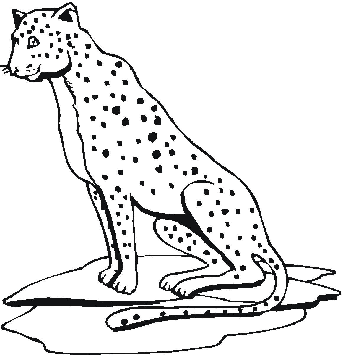 1161x1200 Free Printable Cheetah Coloring Pages For Kids