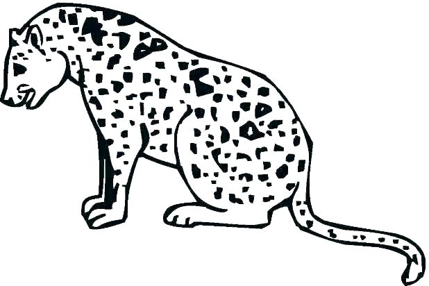 618x412 Printable Cheetah Coloring Pages For Kids Cheetah Color Page