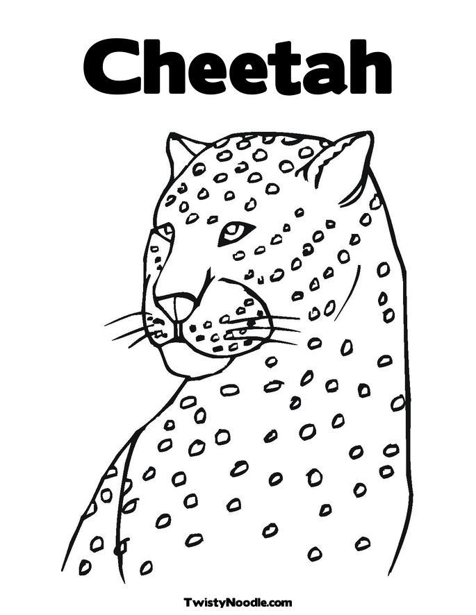 685x886 Cheetah Coloring Page