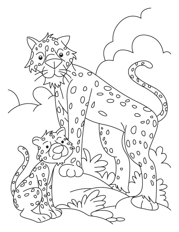 612x792 Coloring Pages Online Flowers Cheetah And Cub Download Free