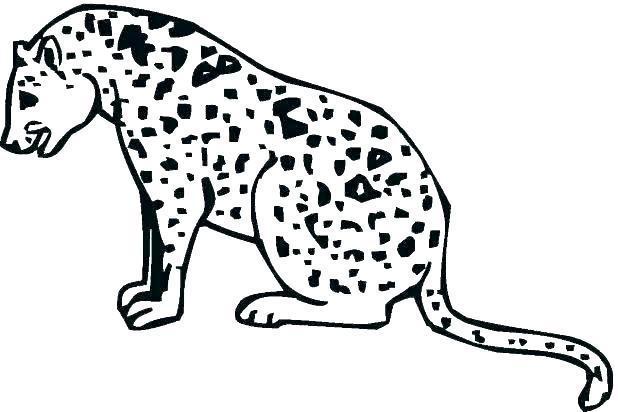 618x412 Coloring Pictures Cheetah Cubs Printable Coloring Cheetah Coloring