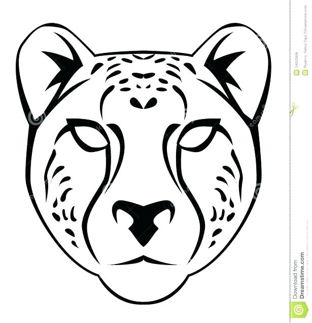 615x635 Drawn Cheetah Coloring Page Pin Pencil And In Color Pages Free