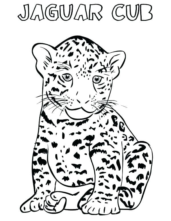 600x776 Free Printable Cheetah Coloring Pages For Kids Cheetah Cub