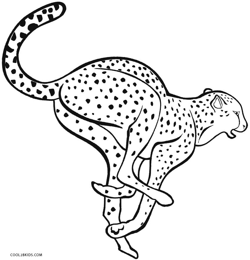 850x885 Printable Cheetah Coloring Pages For Kids