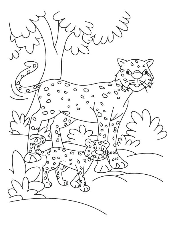 612x792 Cheetah Coloring Pages Cub With Cheetah Coloring Pages Download