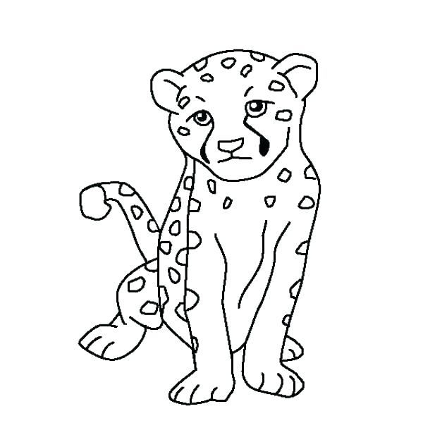 600x600 Coloring Pages Of Cheetahs Cheetah Coloring Pages Free To Print