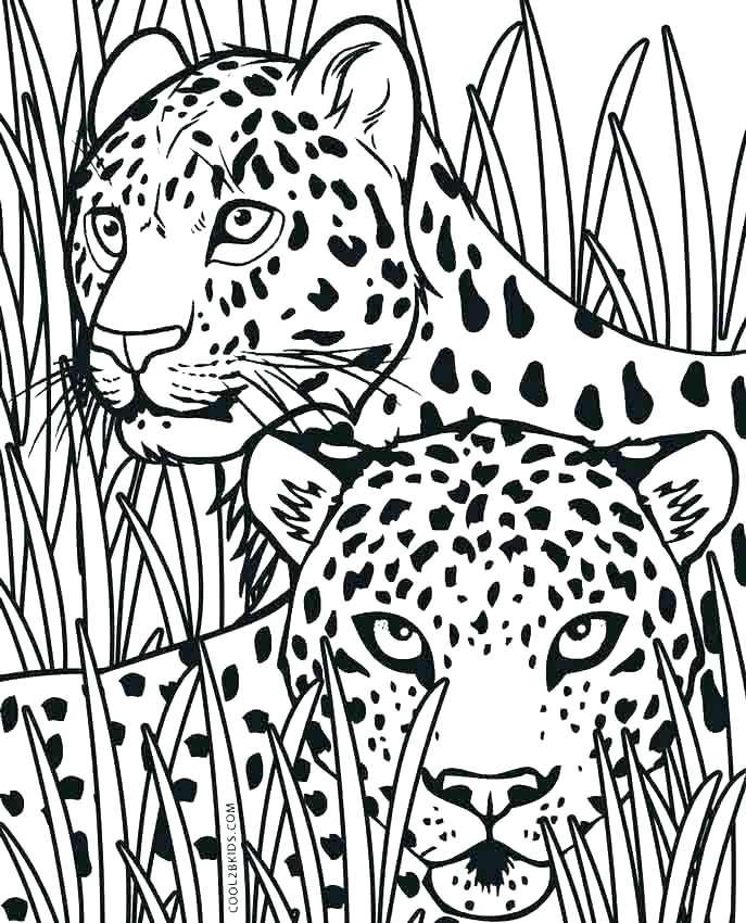 687x850 Cheetah Coloring Page Printable Kids Coloring Cheetah Coloring