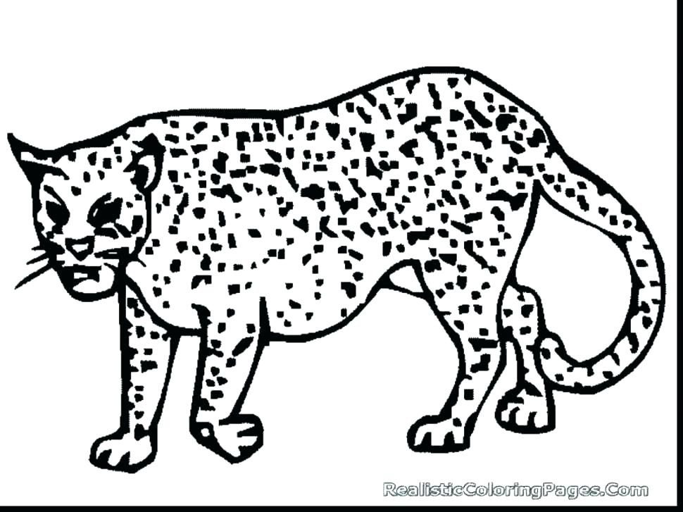 970x727 Cheetah Coloring Pages Cheetah Running Coloring Pages