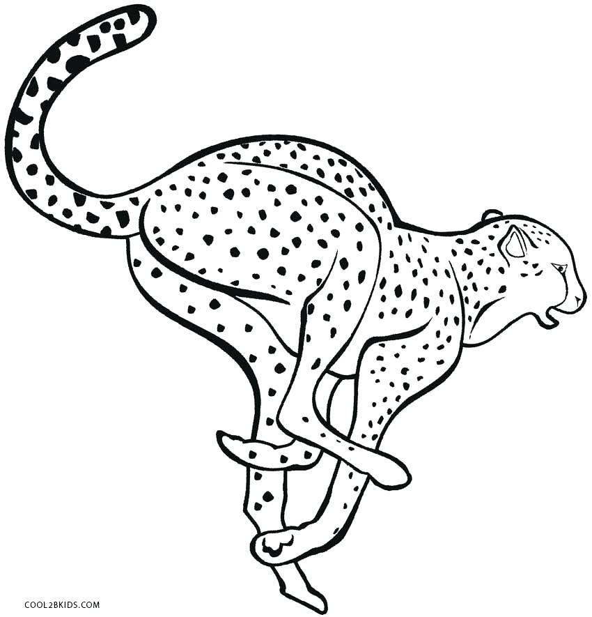 850x885 Cheetah Coloring Pages Cheetah Coloring Page Cheetah Running