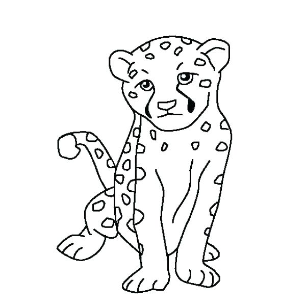 600x600 Cheetah Coloring Pages Cheetah Coloring Page Running Cheetah