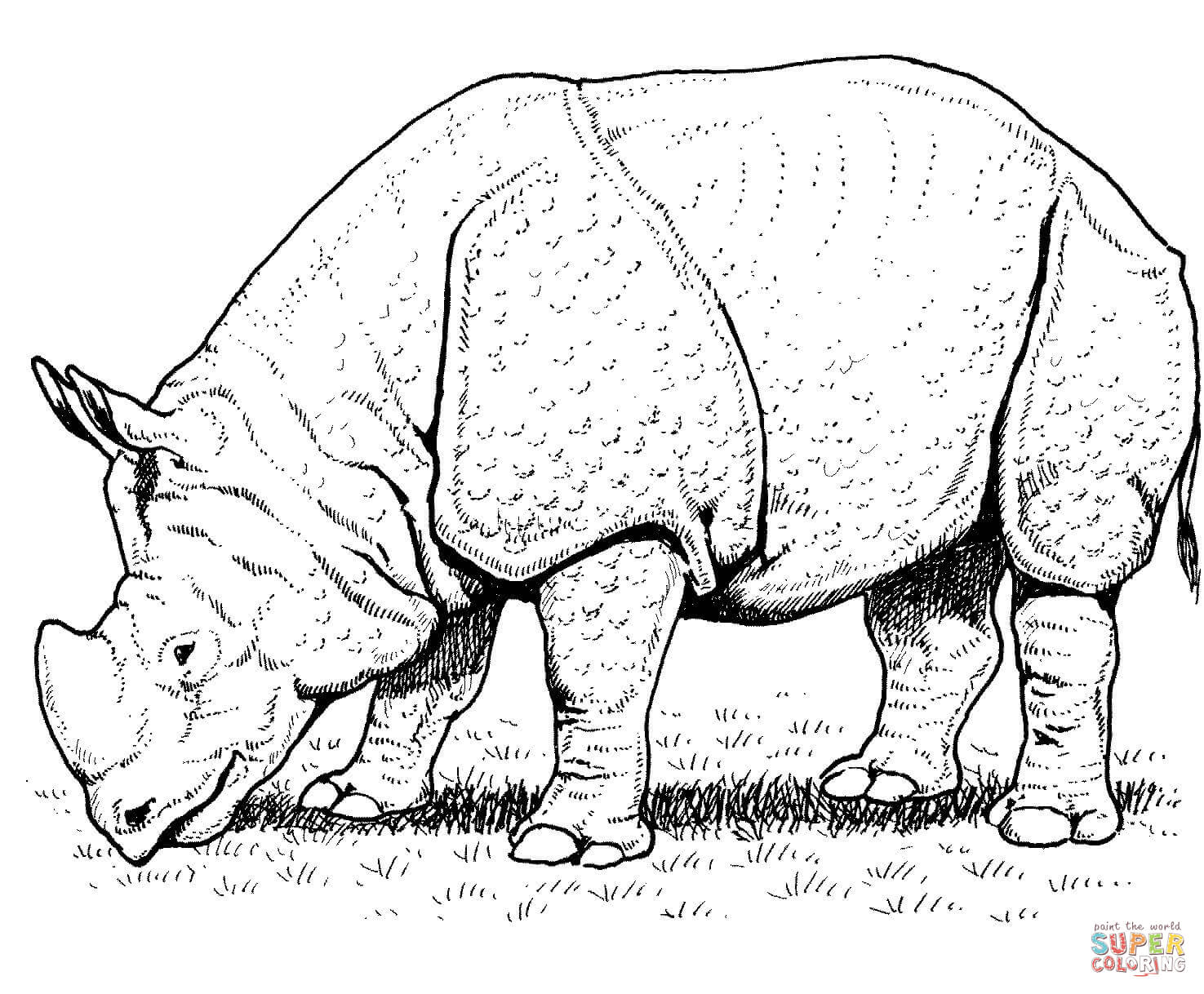 1475x1218 Indian Rhino Coloring Page Free Printable Coloring Pages Rhino