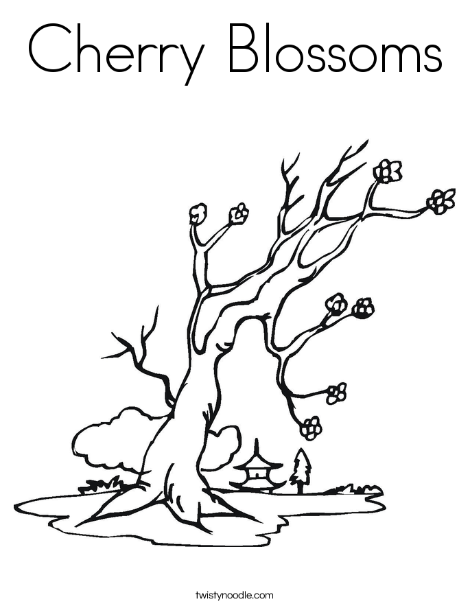 685x886 Cherry Blossoms Coloring Page