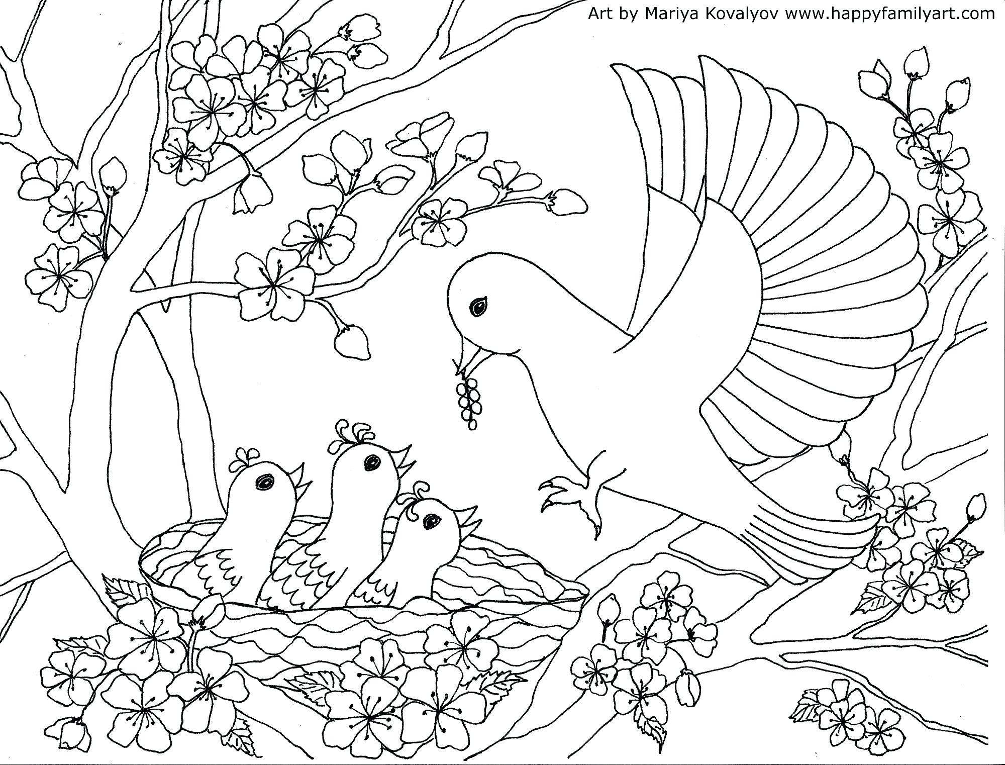 2000x1522 Proven Cherry Blossom Coloring Pages Theotix M
