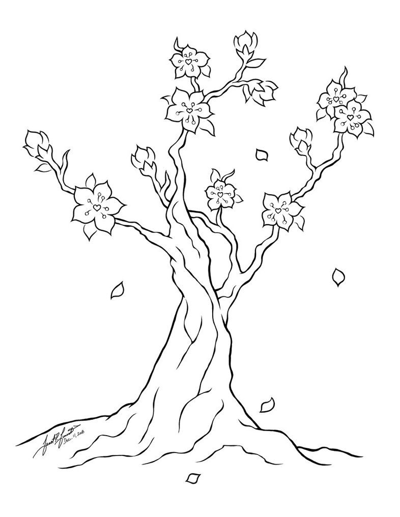 786x1017 Special Cherry Blossom Coloring Page And Pages