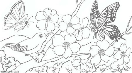450x250 Cherry Blossom Coloring Page