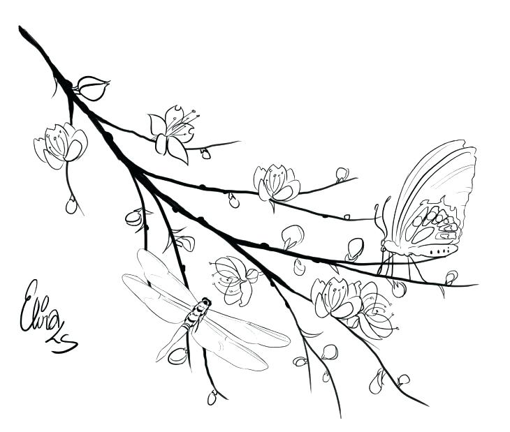 730x619 Cherry Blossom Tree Coloring Page Birds Coloring Pages Cherry