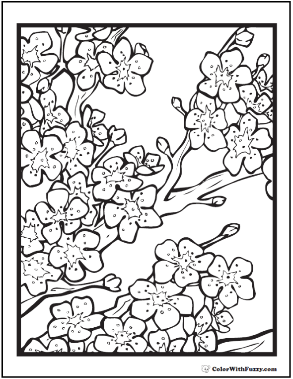 590x762 Adult Coloring Pages Customize Printable Pdfs Cherry