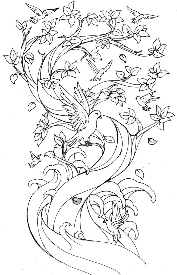700x1087 Japanese Cherry Blossom Coloring Pages Cherry Blossom Tree Drawing