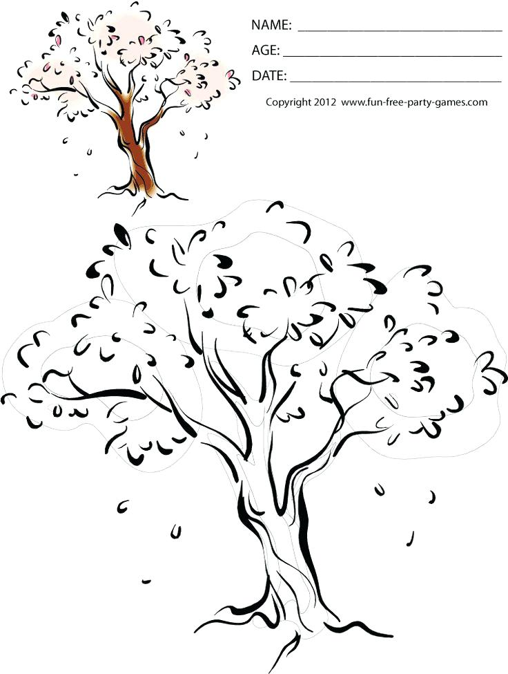736x975 Cherry Blossom Tree Coloring Page Japan Cherry Blossom Coloring