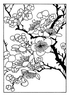 236x325 Cherry Tree Blossom Coloring Page Quilts