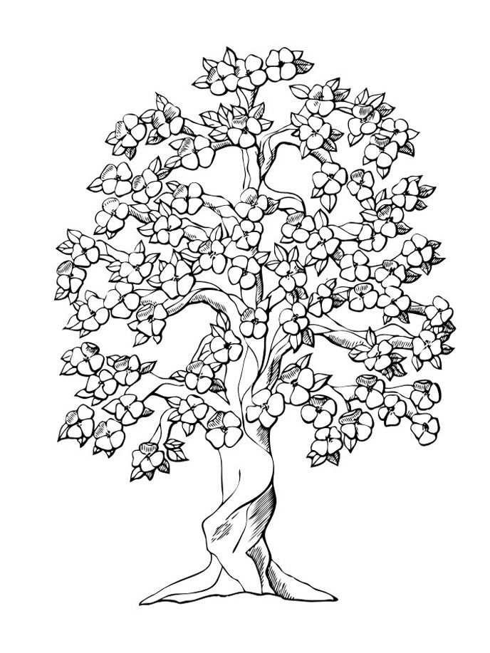 688x917 Free Printable Tree Coloring Pages Embroidery Patterns