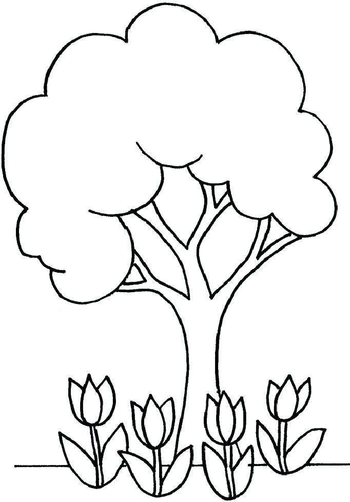 682x976 Tree For Coloring Cherry Tree Coloring Page For Kids And Adults