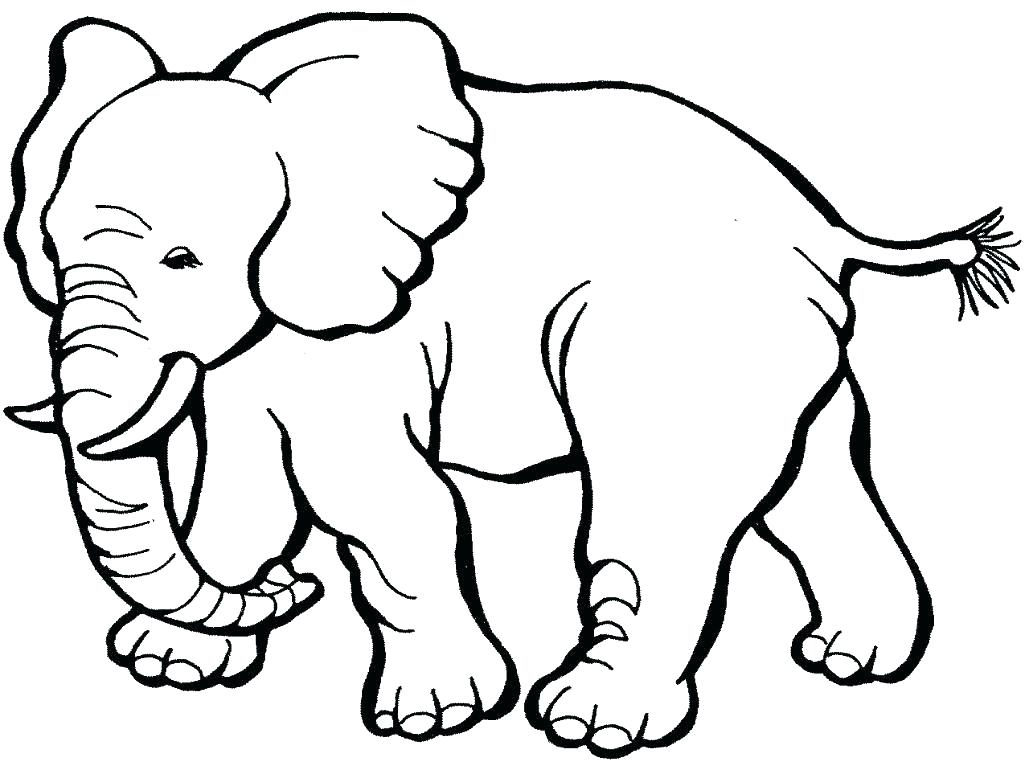 1025x762 Cute Animals Coloring Pages