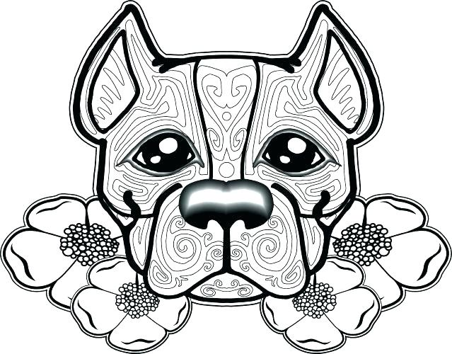 639x500 Chicago Bulls Coloring Pages Bull Coloring Pages Medium Size
