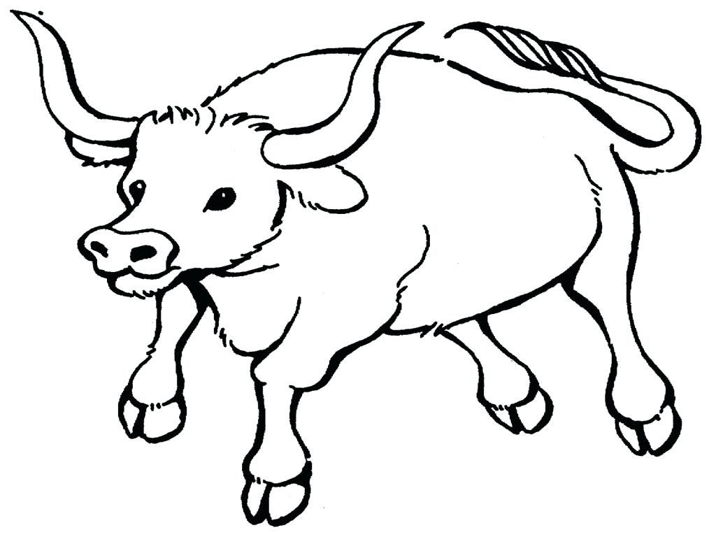 1024x768 Awesome Bulls Coloring Pages Design Printable Coloring Sheet