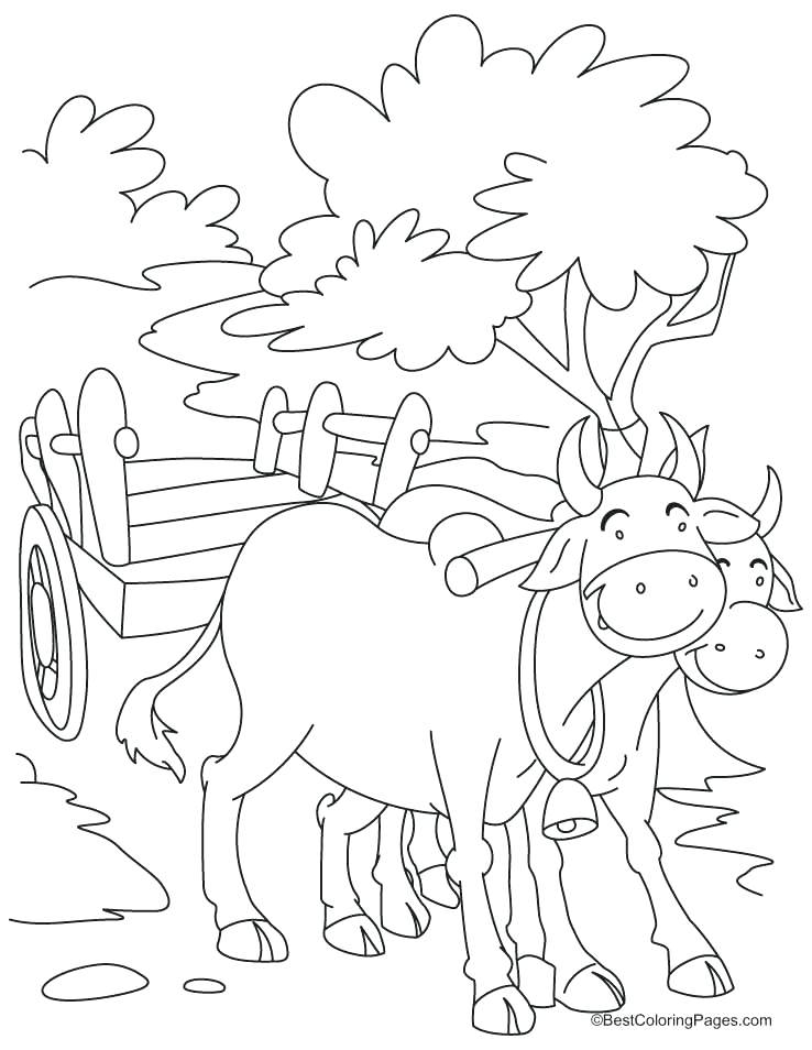 738x954 Bull Coloring Page Bull Coloring Pages Printable Coloring Pages