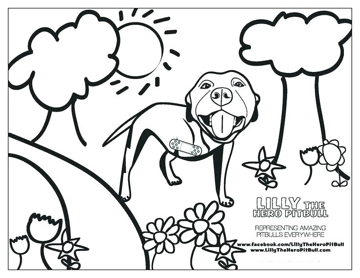 736x568 Bull Coloring Page Coloring Pages Bull Mammals Bull Free Printable