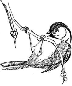 Chickadee Coloring Page