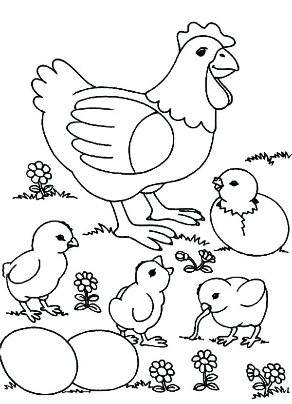 Chicken Coloring Pages For Kids at GetDrawings.com | Free ...