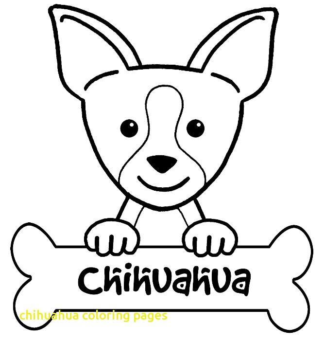 kleurplaten chiwawa kleurplaat