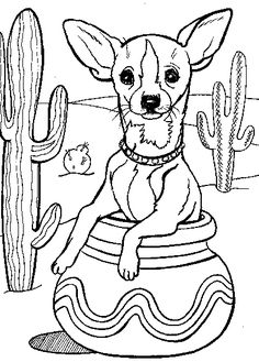 The Best Free Chihuahua Coloring Page Images Download From 183 Free Coloring Pages Of Chihuahua At Getdrawings