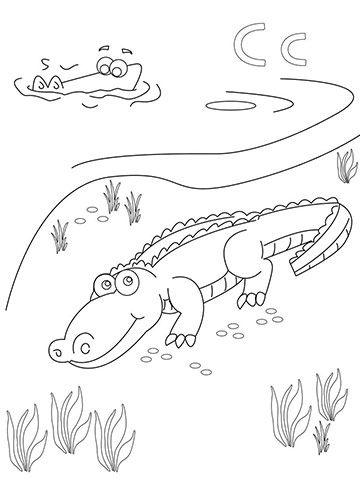 360x480 Animal Coloring Pages