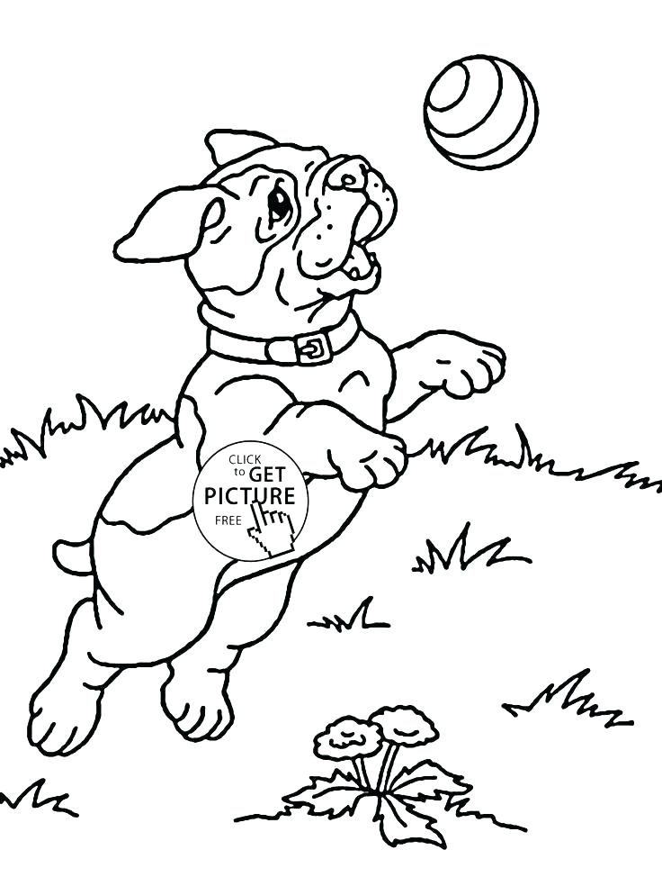 736x994 Childrens Coloring Pages Animals Vanda