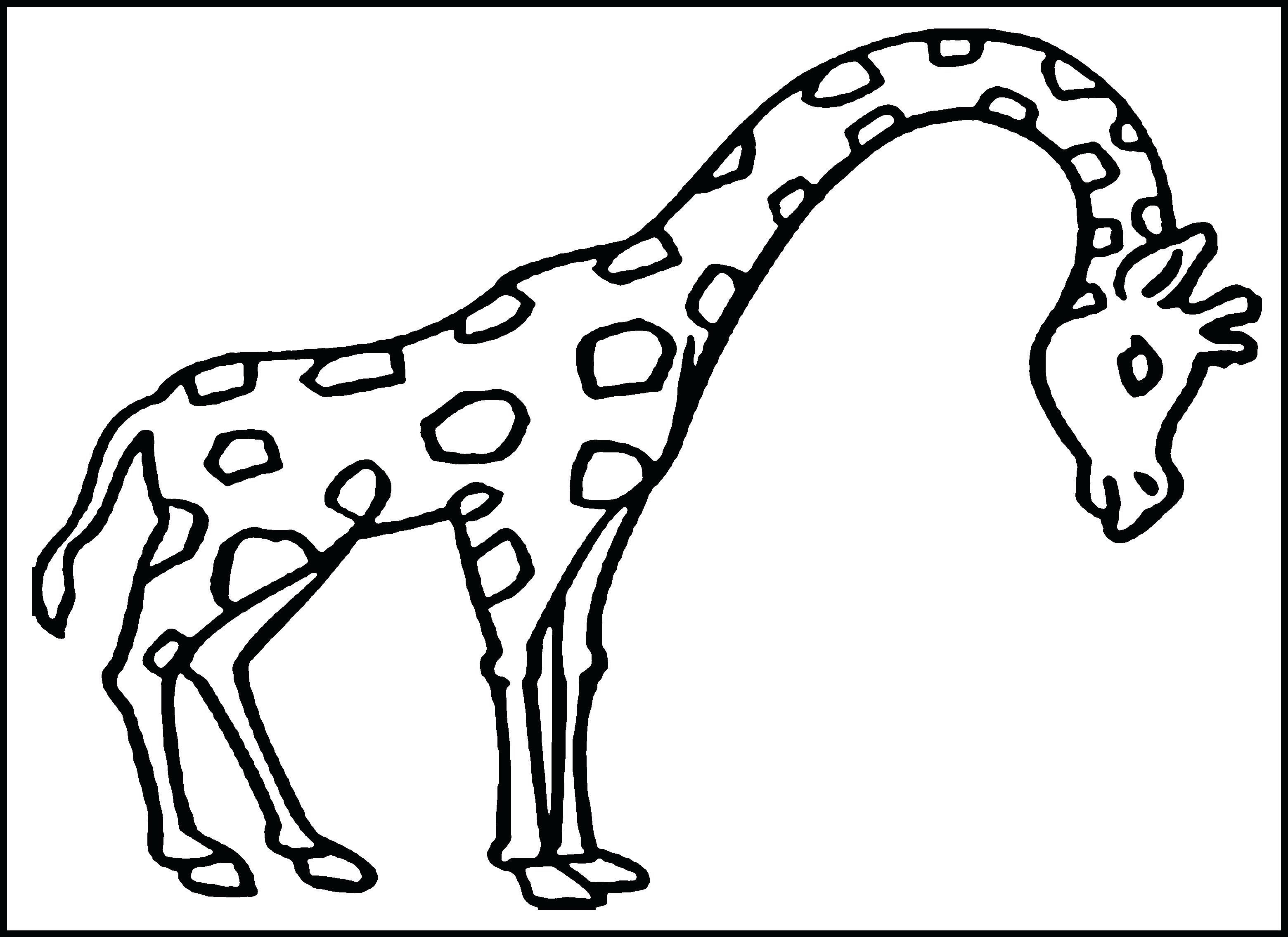 3120x2270 Coloring Pages For Boys Gumball Overlay Run Page Giraffe Running